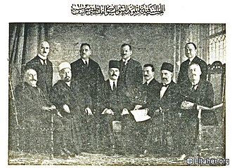 Syrian–Palestinian Congress - Syro-Palestinian Interim Conference in Geneva, 1921