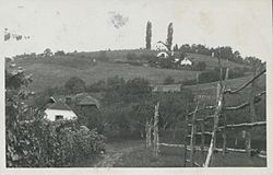 1929 postcard of Kovača vas.jpg