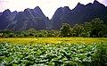 1996 -262-7A Guilin (Li River) (5068521479).jpg
