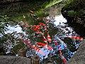 1 Chome-1 Shirokanedai, Minato-ku, Tōkyō-to 108-0071, Japan - panoramio (2).jpg