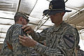 1st Air Cavalry Brigade celebrates Independence Day with combat patch ceremony DVIDS185177.jpg