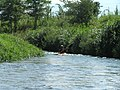 2007-08-13 Yorozui-River Canoe touring 万水川カヌーツーリング(カナディアンカヌー)P8138687.jpg