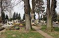 2012-04 Radziejów 07.jpg