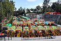 2013-12-22 Xochimilco 01 anagoria.JPG