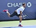2013 US Open (Tennis) - Fabio Fognini (9667955448).jpg