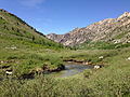 2014-06-23 14 13 07 View down Lamoille Creek from the Watershed Overlook in Lamoille Canyon, Nevada.JPG