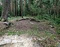 20140815040DR Karsdorf (Rabenau) Dippoldiswalder Heide Katharinenkapelle.jpg