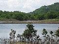 22 Oct 2008 Newmarket Jamaica - panoramio - pismay (2).jpg