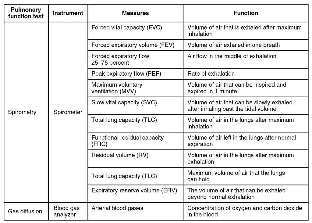 Functional Organizational Chart: 2329 Pulmonary Function TestingN.jpg - Wikimedia Commons,Chart