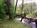 3542. Bolshaya Izhora. Chyornaya River.jpg