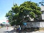 3720NAIA Expressway NAIA Road, Pasay Parañaque City 10.jpg