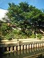 7785San Miguel, Manila Roads Landmarks 16.jpg