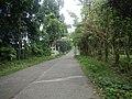 9501Poblacion Del Carmen, Alaminos, Road 25.jpg