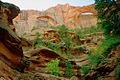 A127, Zion National Park, Utah, USA, Kolob Arch, 2004.jpg