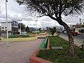 AVENIDA - panoramio.jpg