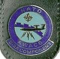 AWACS (V1).jpg