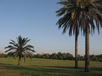 A Yarkon Park 01.JPG