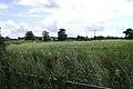A field near Henry VIII Farm, Myton, Warwick - geograph.org.uk - 1415378.jpg