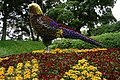 A floral bird - geograph.org.uk - 1602257.jpg