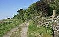 A track near Port Appin - geograph.org.uk - 1341615.jpg