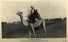 A typical camel group (1911) - TIMEA.jpg