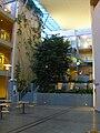 Aalesund University - Inside.jpg