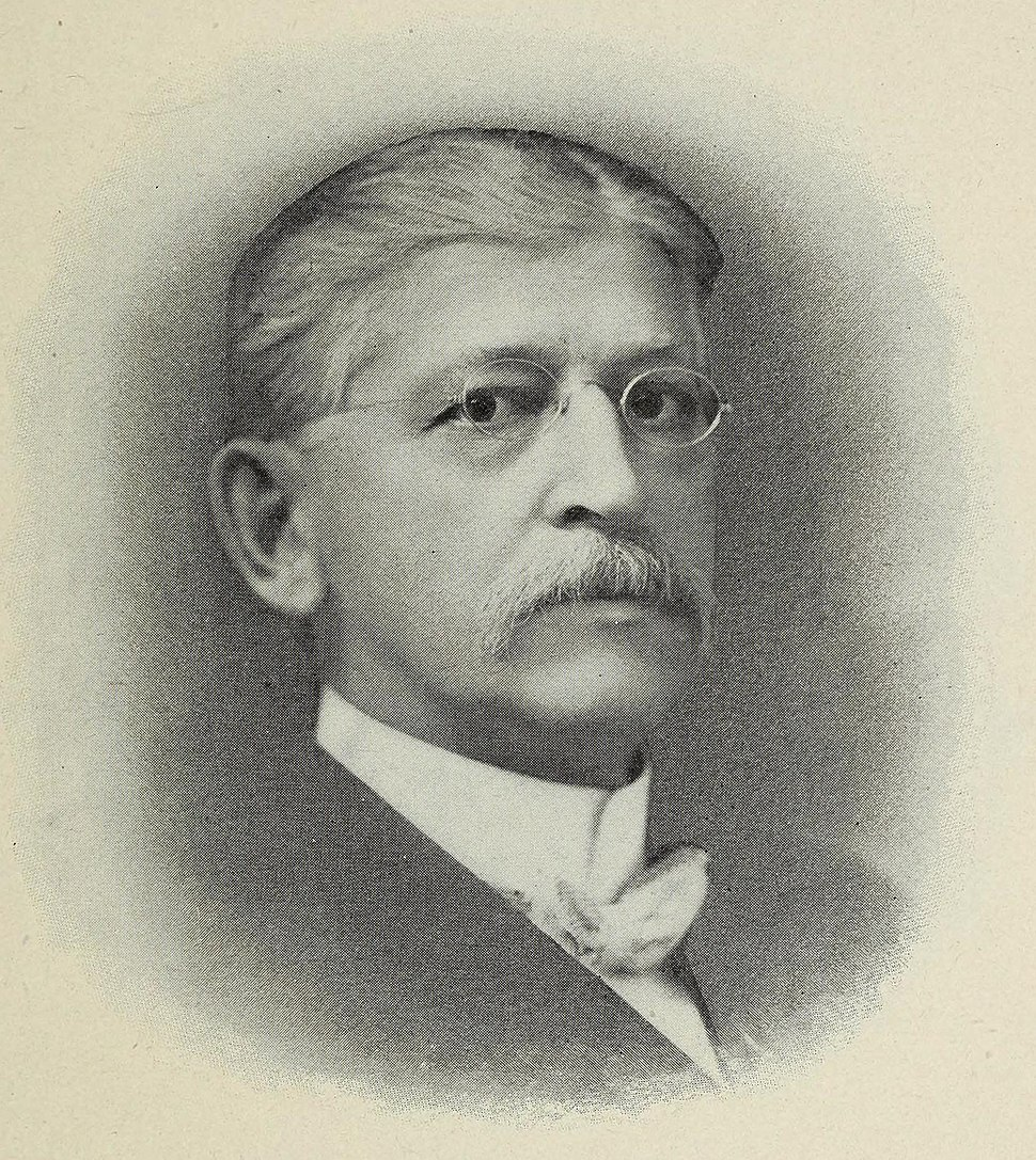 Aaron T. Bliss, Governor of Michigan portrait