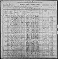 Abraham Oldrin Salter (1838-1921) in the 1900 US census.jpg