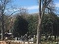 Academia Nacional de Ciências dos USA - Monumento a Einstein - Washington DC - USA - panoramio.jpg