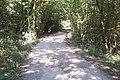 Access road towards Bedgebury Road - geograph.org.uk - 1512603.jpg