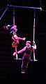 Acrobatics Trapetz im Zirkus 2.JPG