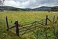 Across the fields near Bridge of Tanar - geograph.org.uk - 1552401.jpg