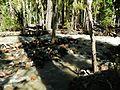 Adams Creek at Mount Adams Wilderness 02.JPG