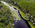 Aerial image of Acarlar floodplain forest 2.jpg