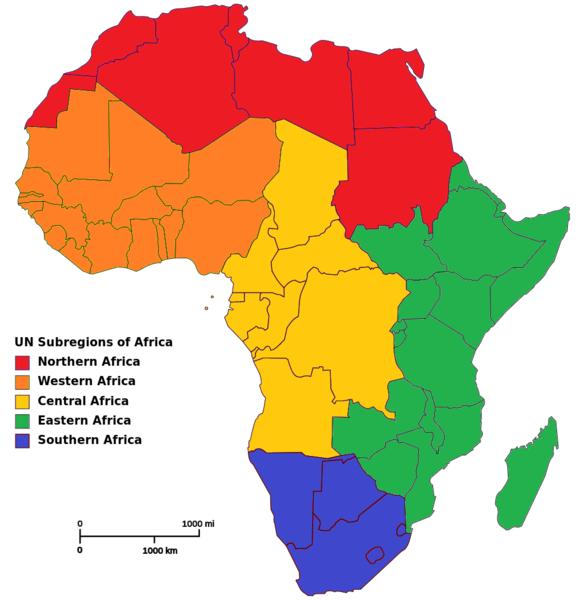 Best African Brokers