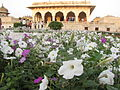 Agra Fort 45 (Friar's Balsam Flickr).jpg