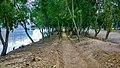 Altadighi National Park Lakeside.jpg