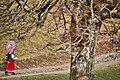 Altersilvesterappenzell2020 03.jpg