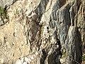 Americn River, Auburn, California - panoramio - UncleVinny (3).jpg