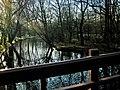 Amsterdam, 21 de março de 2009 - panoramio - Kell Kell (2).jpg