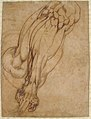 Anatomical Studies of a Leg (recto); Study of a Leg (verso) MET 21.15.1 VERSO.jpg