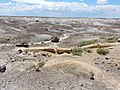 Apache County, AZ, USA - panoramio (2).jpg