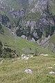 Appenzell Inner-Rhoden - panoramio (15).jpg