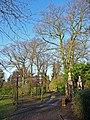 Arboretum, West Lodge Park, Hadley Wood,Hertfordshire - geograph.org.uk - 1163942.jpg