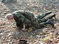 ArmyMilCombativesRearmount.jpg