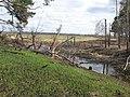 Asinovsky District, Tomsk Oblast, Russia - panoramio (294).jpg