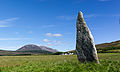 Auchencar standing stone - facing farm.jpg