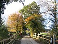 Autumn Lane Scene - geograph.org.uk - 651516.jpg