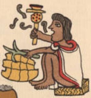 Teponaztli - Image: Aztec turtle shell drum ayotapalcatl teponaztli
