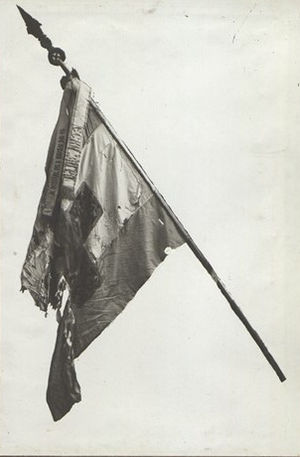 Samara flag - Image: BASA VD 1217 2 12 163
